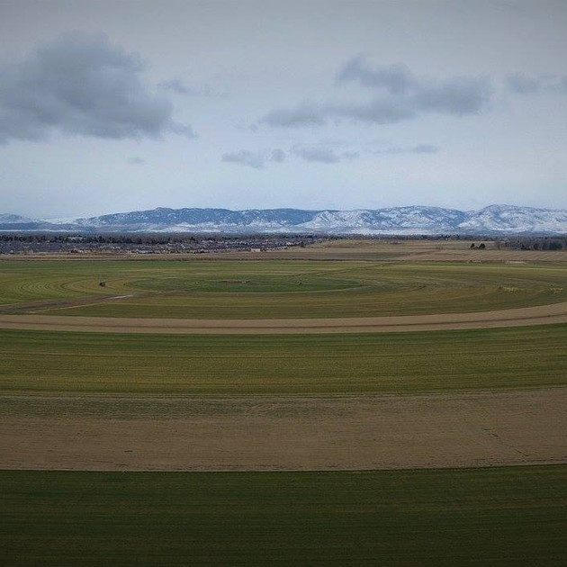 Late spring at our Fort Collins Sod Farm