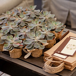Wedding. Rustic . Favors on a table outd