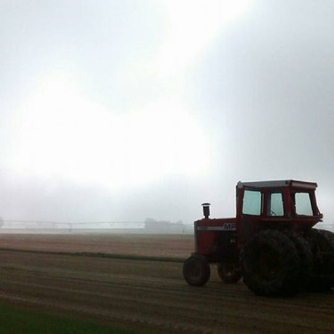 Tractor on a foggy morning in Wheatland
