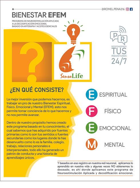 EFEM WEb1.jpg