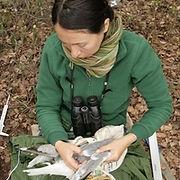 Magdalena Zagalska-Neubauer David Canal collared flycatcher MHC parasites