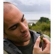 Lorenzo Perez Rodriguez David Canal Doñana color pied flycatcher sexual selection
