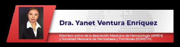 yanet-01.png