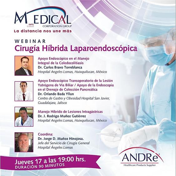 Cirugía Híbrida Laparoendoscopica