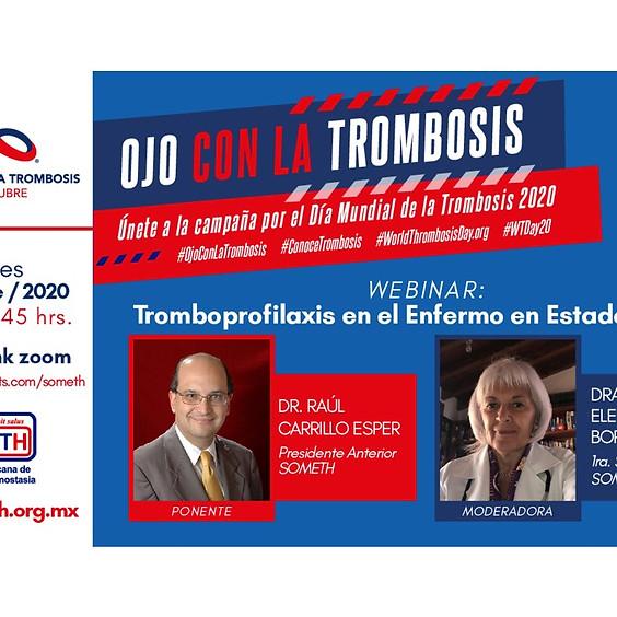 Tromboprofilaxis en el Enfermo en Estado Crítico.