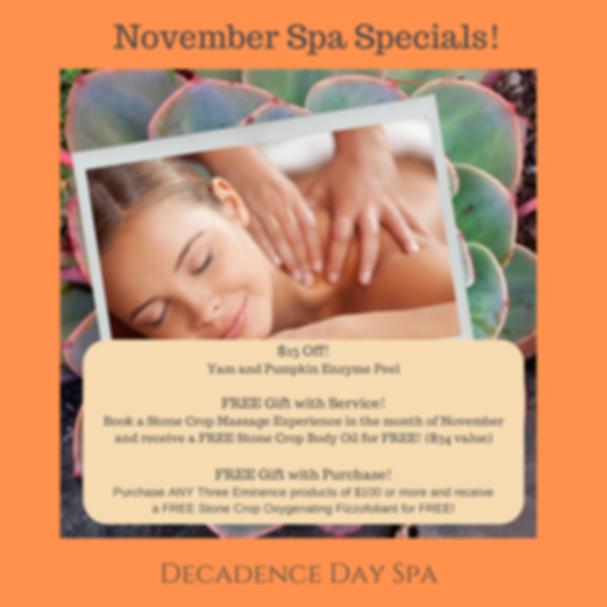 Copy of November Spa Specials!.png