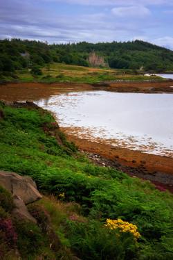 View of Dunvegan