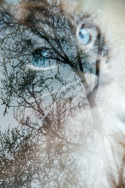 Playing with in-camera double-exposure 2