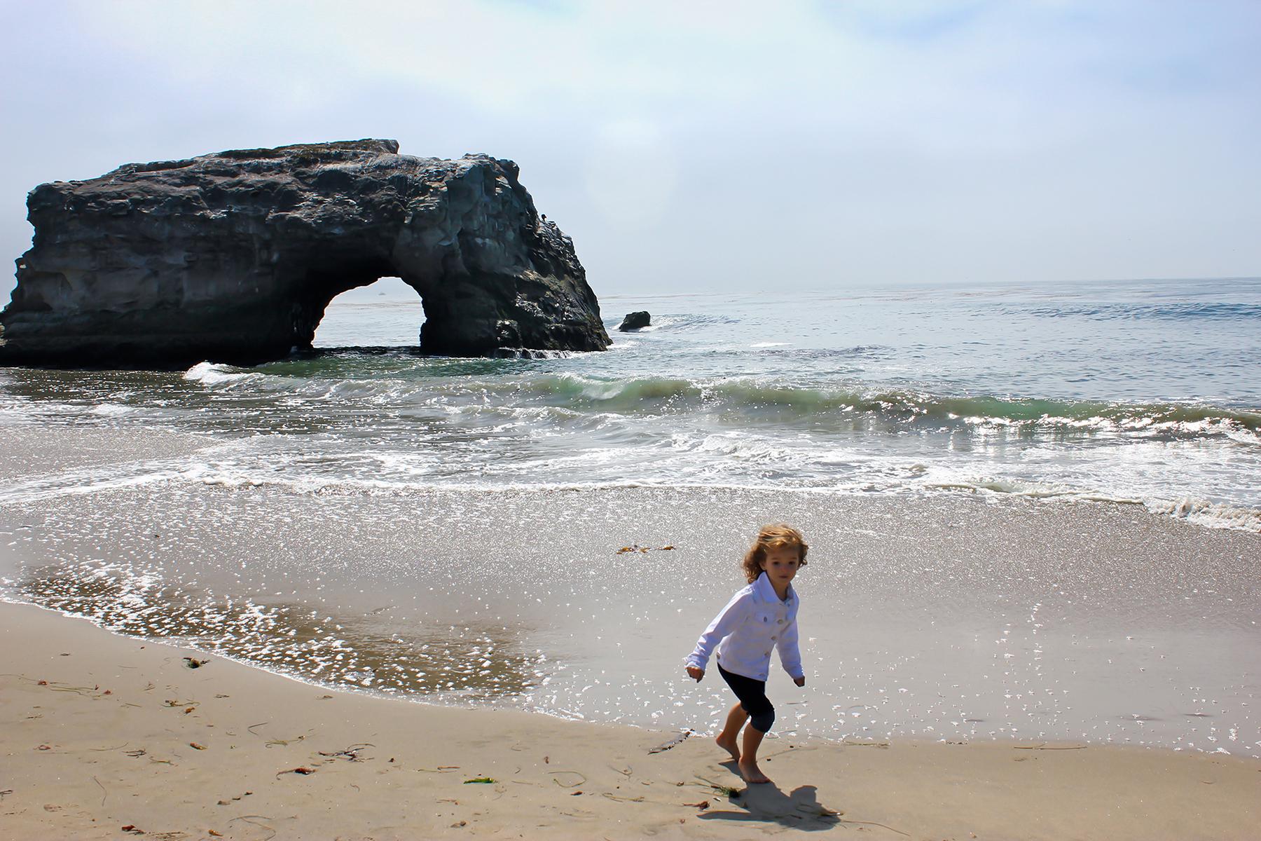 Natural Bridges, Santa Cruz 2010