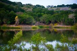 Lafayette Reservoir 3