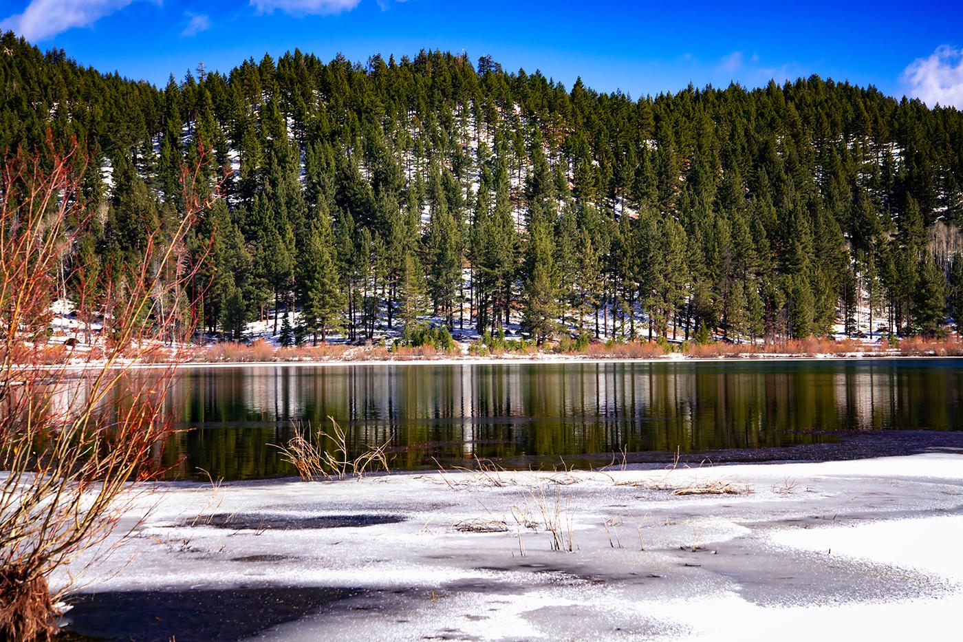 Spooner Lake Reflection