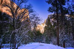 Late Afternoon in Yosemite.jpg
