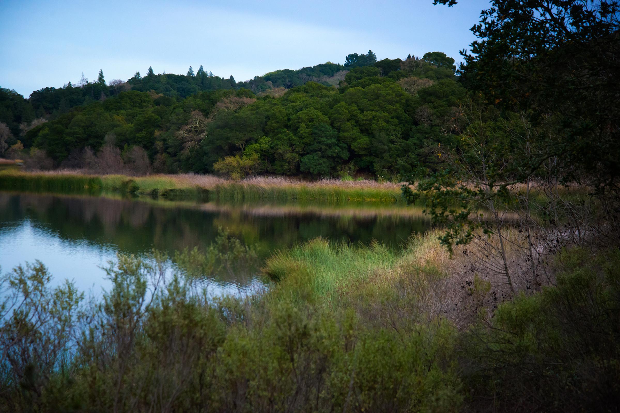Lafayette Reservoir 1
