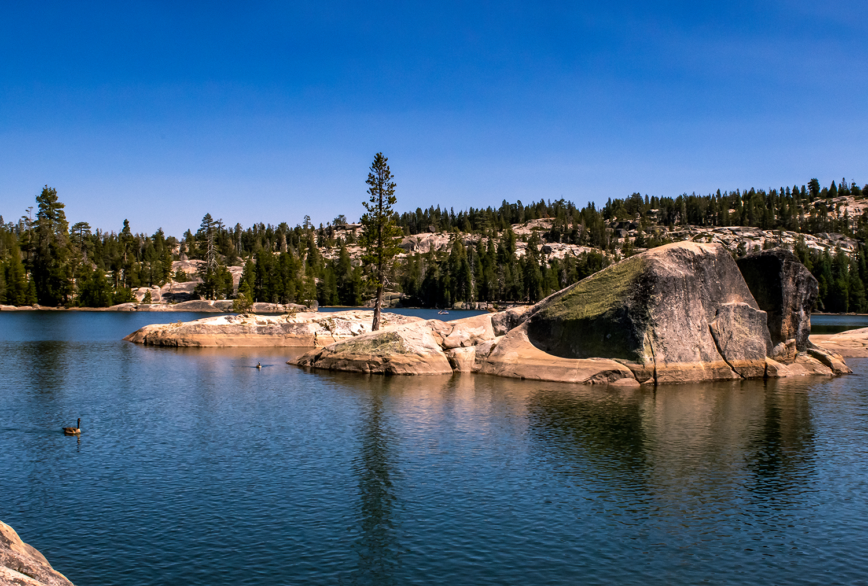Summer at Utica Reservoir