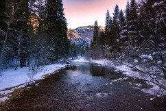 A winter scene.jpg