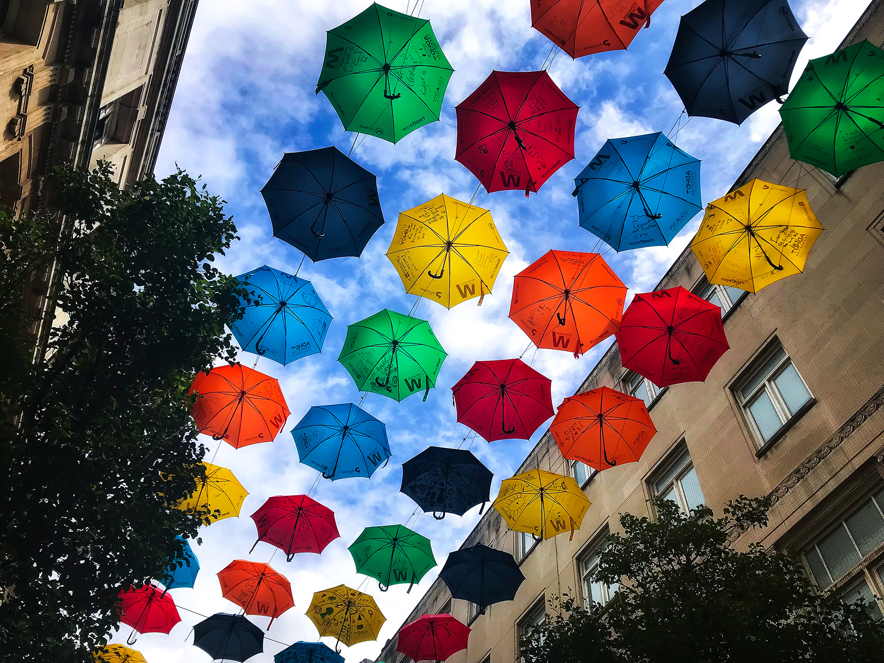 The Umbrella Project, Church Alley, Live
