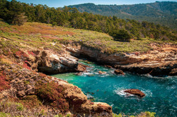Headland Cove, Point Lobos