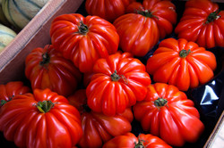 French Heirloom Tomatoes