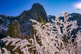 Winter's Lace, Sentinel Rock.jpg