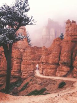 Bryce Canyon Wonderland