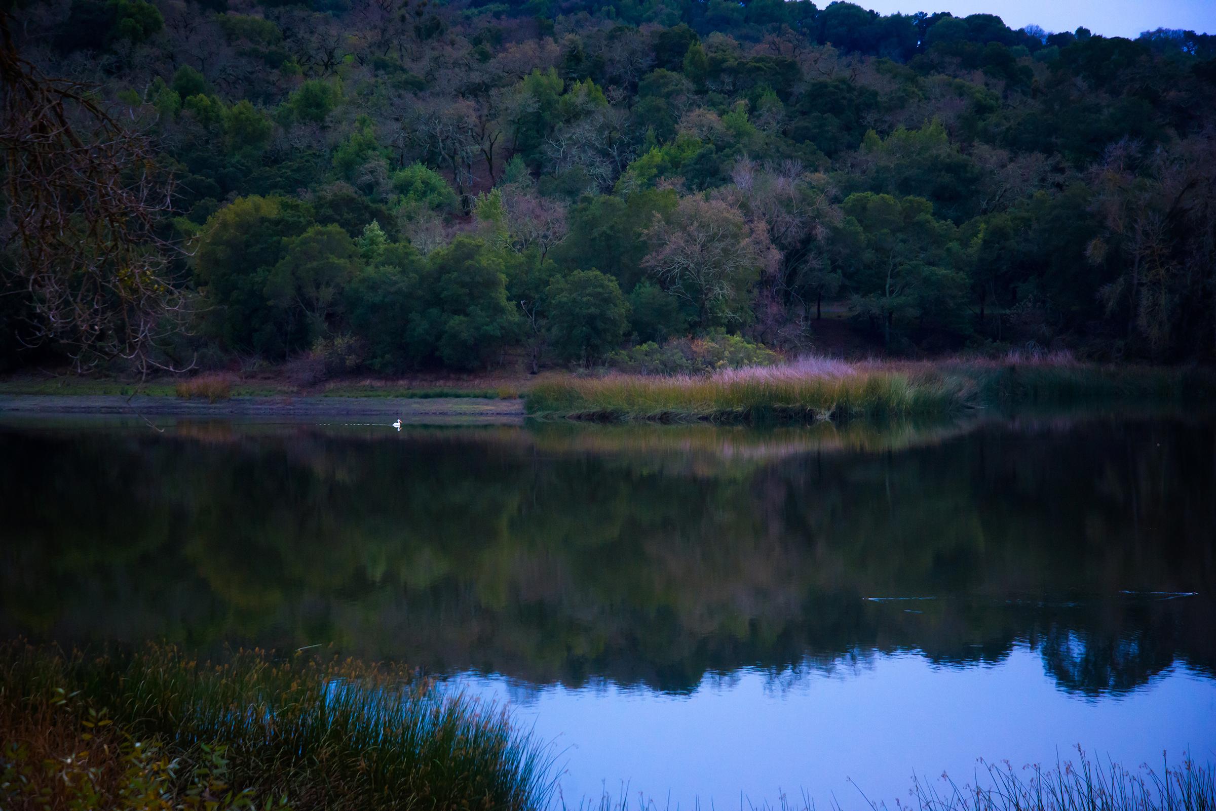 Lafayette Reservoir at Dusk