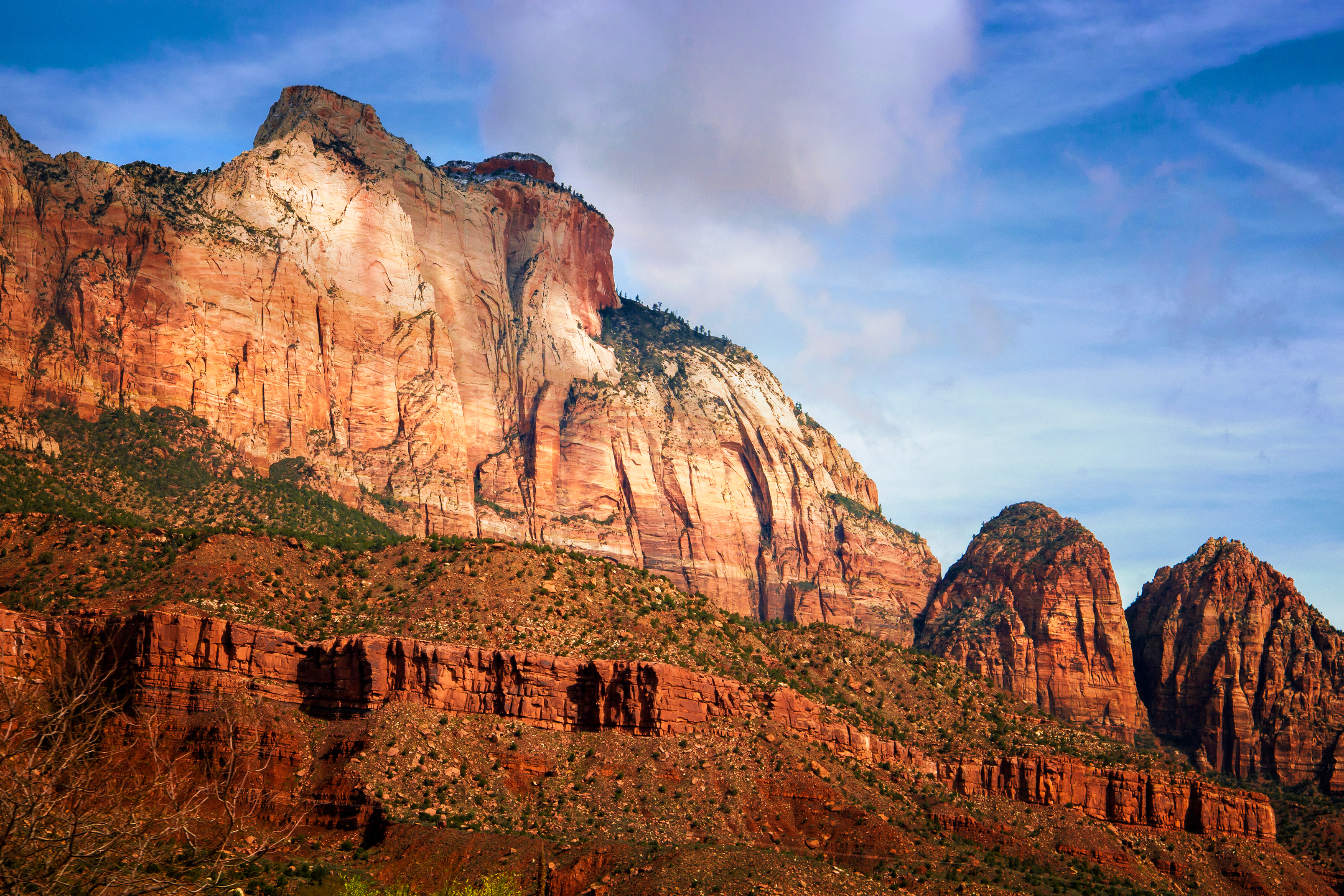 The Beehives at Zion