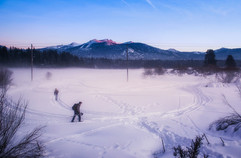 Snowalkers.jpg