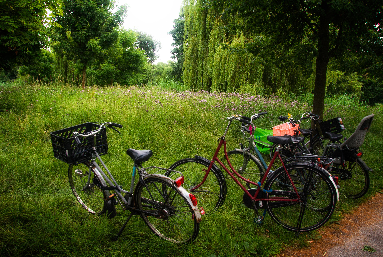 Green Transportation