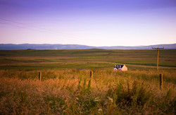 Lonely homestead in Totscore, Skye