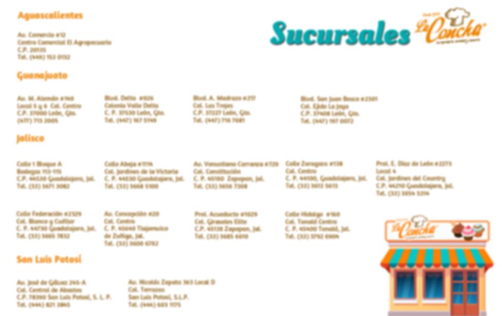 sucursales2-pagina-web.png