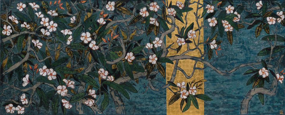 Plumeria | Hoa Mận
