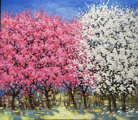 Spring Season | Mùa Xuân