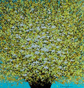 Apricot Blossoms 01 | Hoa Mai 01