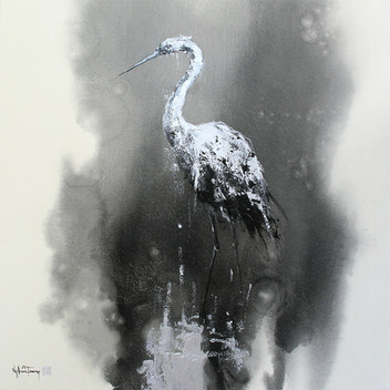 Stork 01   Cò 01