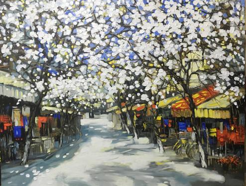 Spring Street | Phố Xuân