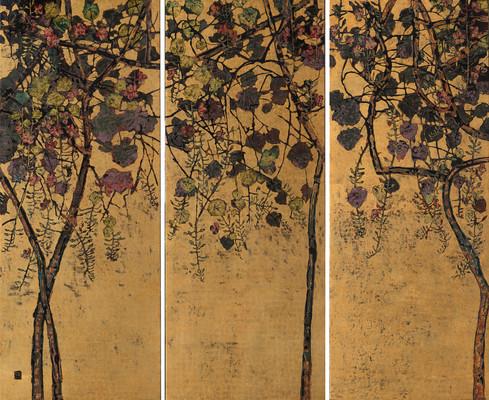 Thunbergia Grandiflora | Dây Bông Xanh