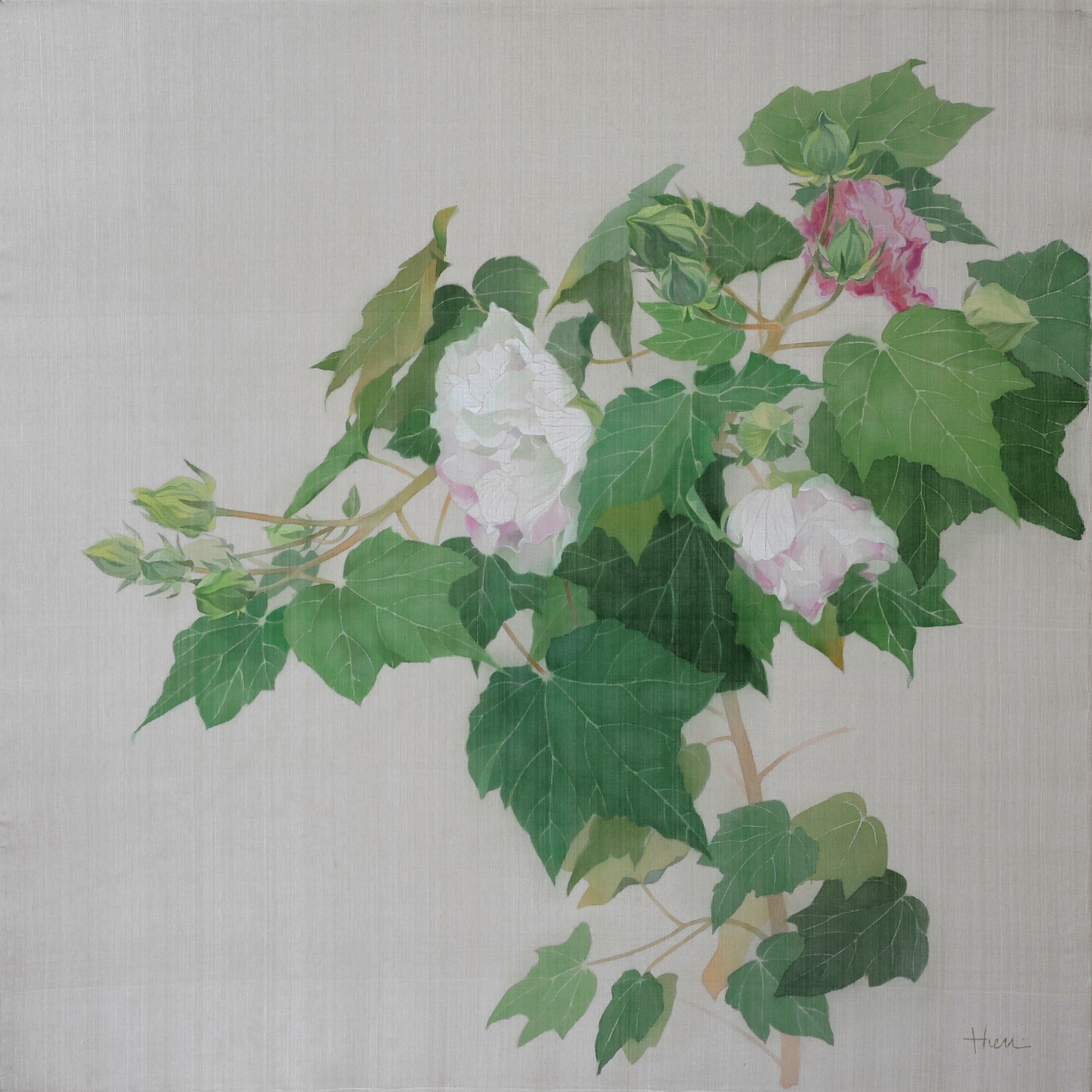 Hibiscus 02 | Mộc Phù Dung 02