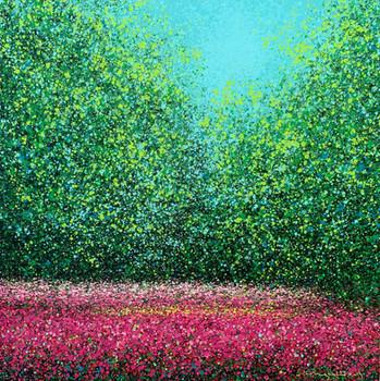 Field of Flowers | Cánh Đồng Hoa