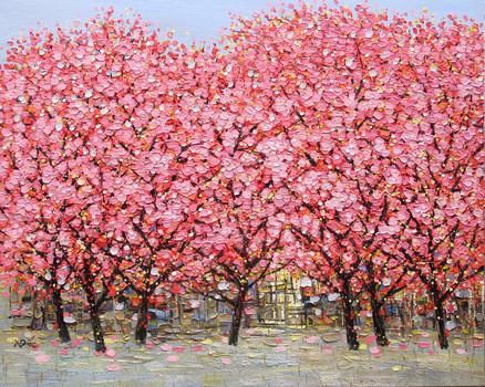 Flowers' Season | Mùa Hoa