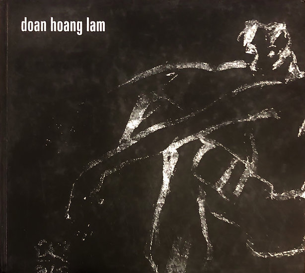 Doan Hoang Lam's Collection