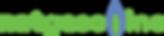 Natgasoline_logo.png