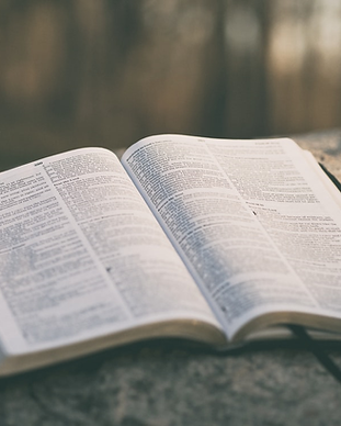 open bible 2.png