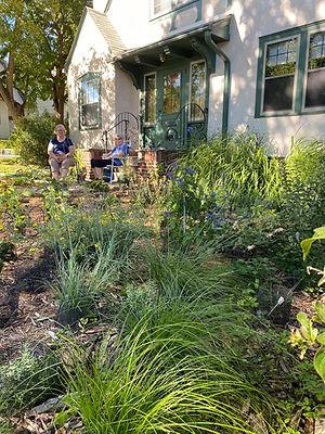Becky rain garden native plants.jpg