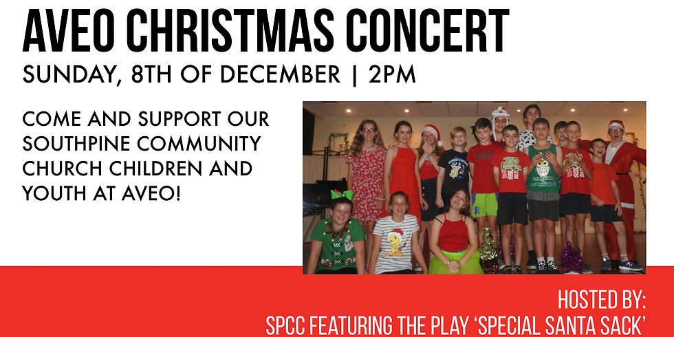 AVEO Christmas Concert