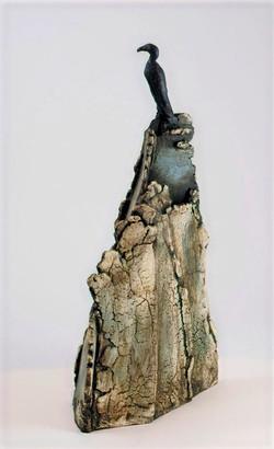 Cormorant on Crag