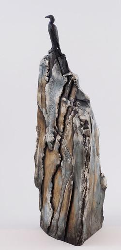 Cormorant on Cliff