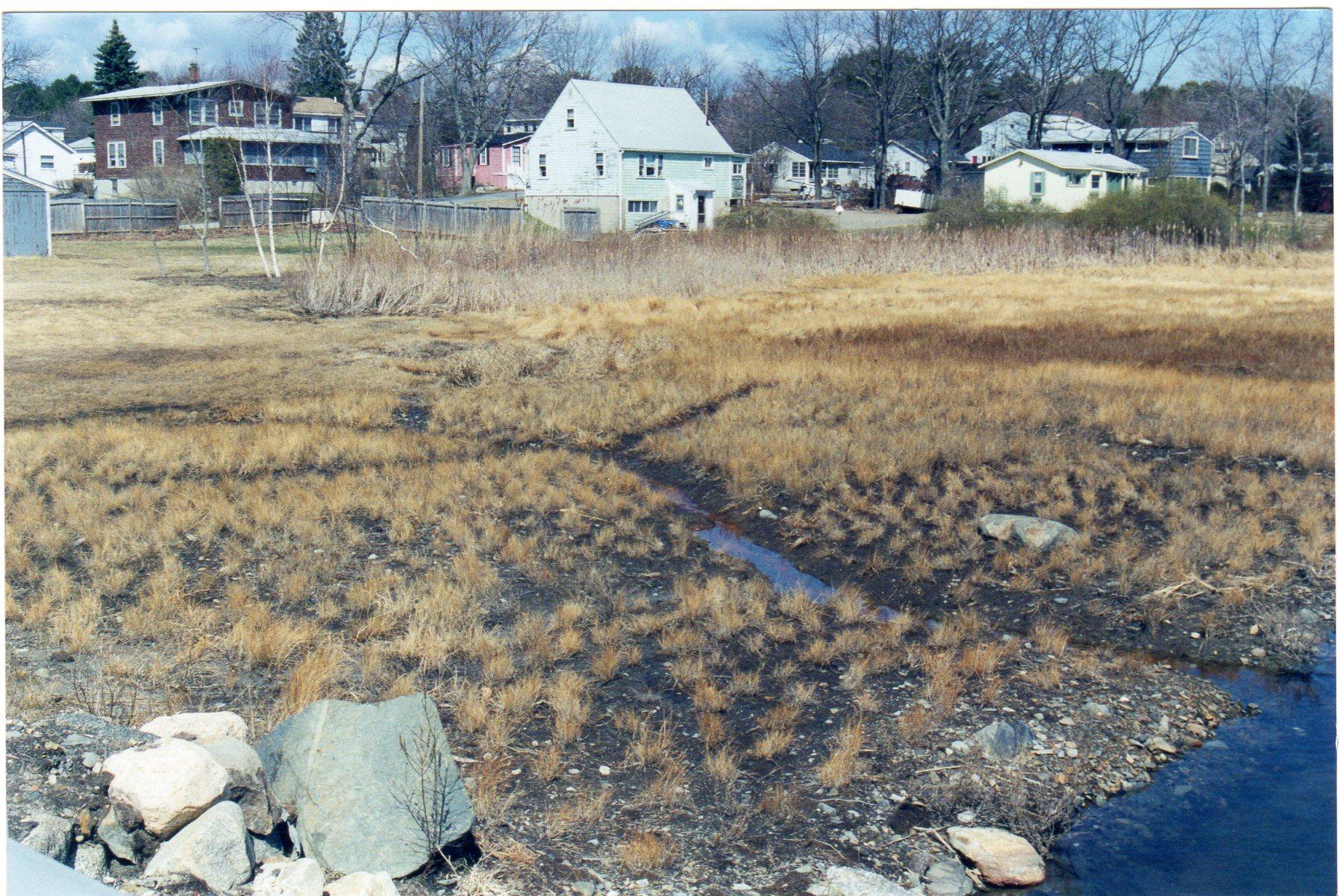 Wallace Road Salt Marsh Restoration