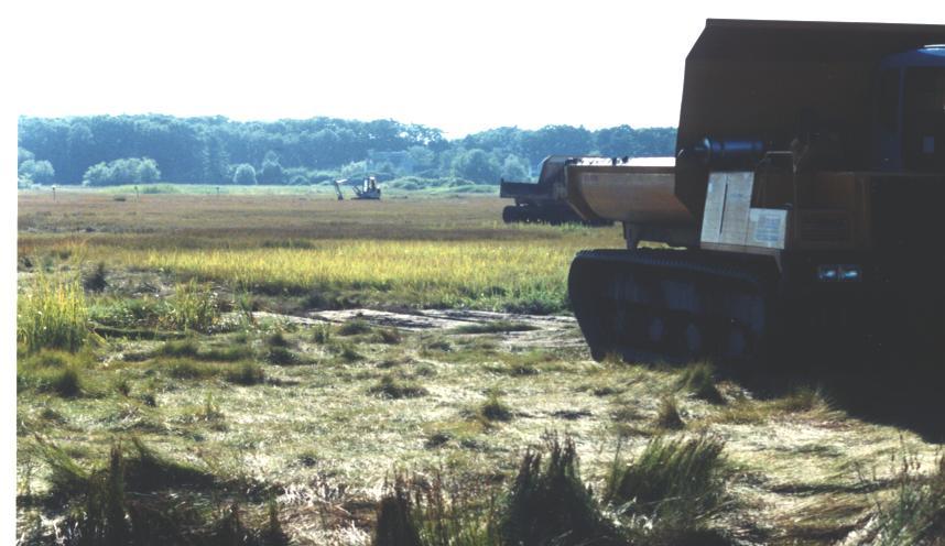 Little River Salt Marsh Restoration