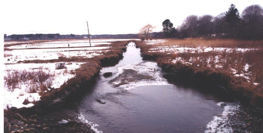 Nhampton_little river_before 1 (2)