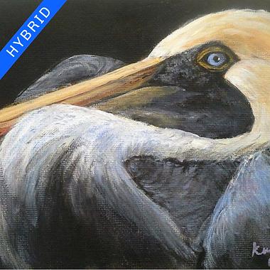 Barb Kuzin Acrylics Pelican Hybrid.png